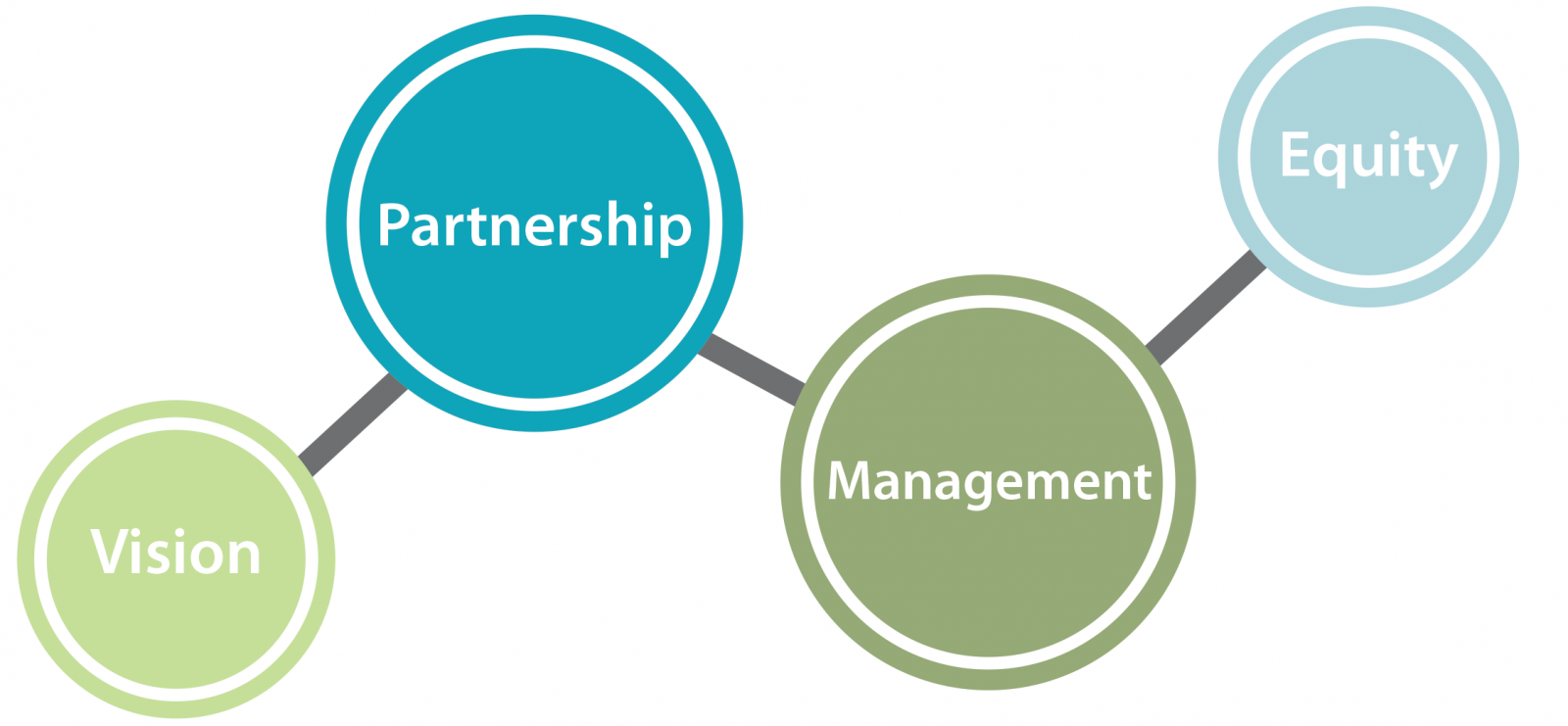 Vision partnership management equity infographic